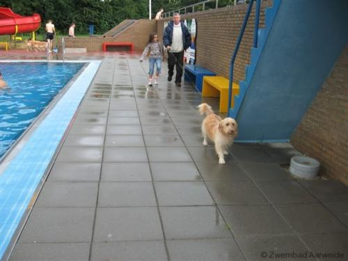 Afsluiting zwemseizoen 2008 018